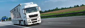 monitoring pojazdów online